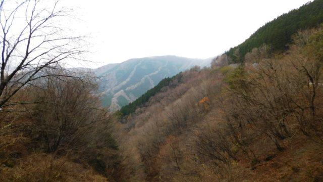 国道309号から見えるナメゴ谷