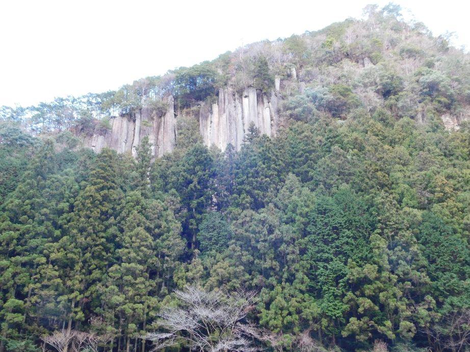 天摩嶺付近の安山岩の柱状節理