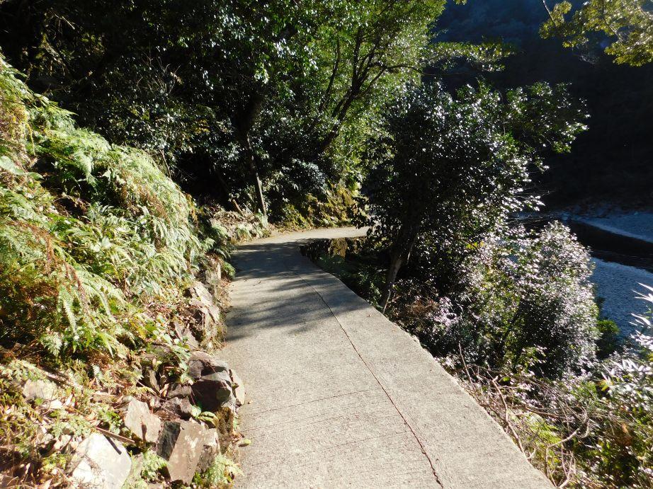 山彦橋への道